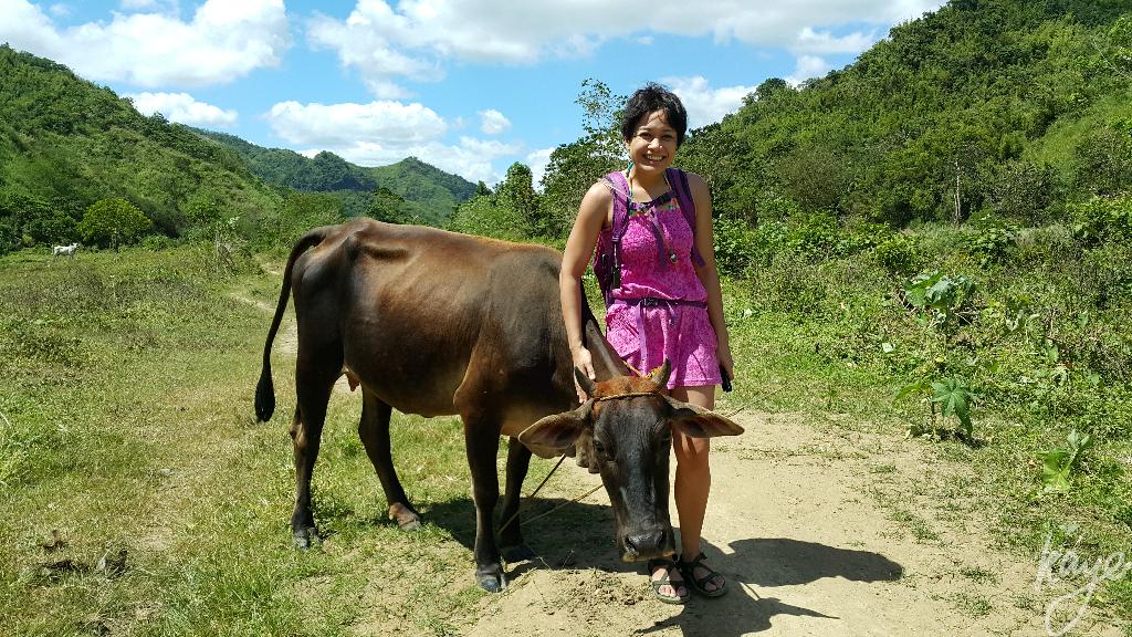 The best cow I've ever met!
